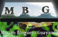 Macizo Bloguero Guayanés